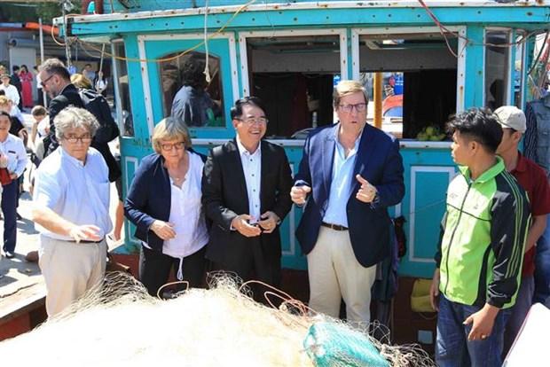 欧洲议会渔业委员会对海防市进行工作访问 hinh anh 2