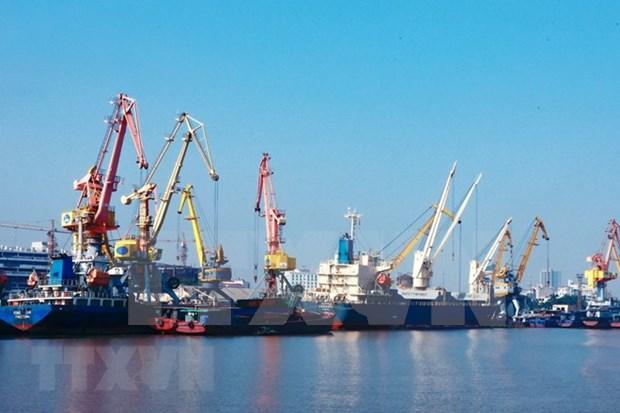 今年前10月越南港口货物吞吐量达4.3万多吨 hinh anh 1