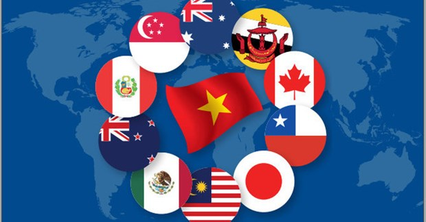 《全面且先进的跨太平洋伙伴关系协定》——越南发展事业的机遇和挑战 hinh anh 1