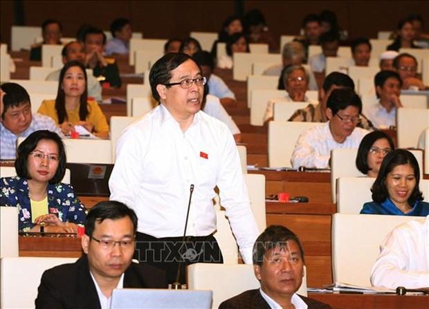 批准CPTPP充分体现越南融入国际社会的主张 hinh anh 1