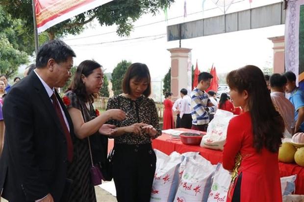 越南第三届大米节将于12月18日开幕 hinh anh 1
