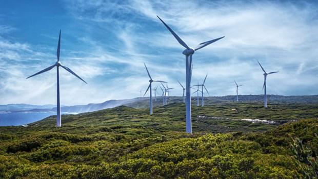 UNDP专家:越南需要考虑到大力发展可再生能源的方案 hinh anh 1