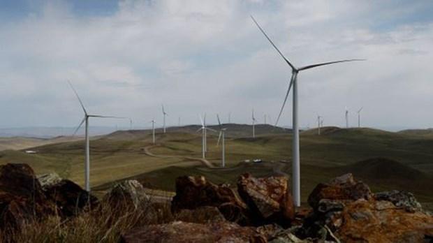 德国愿协助越南发展风力发电 hinh anh 1