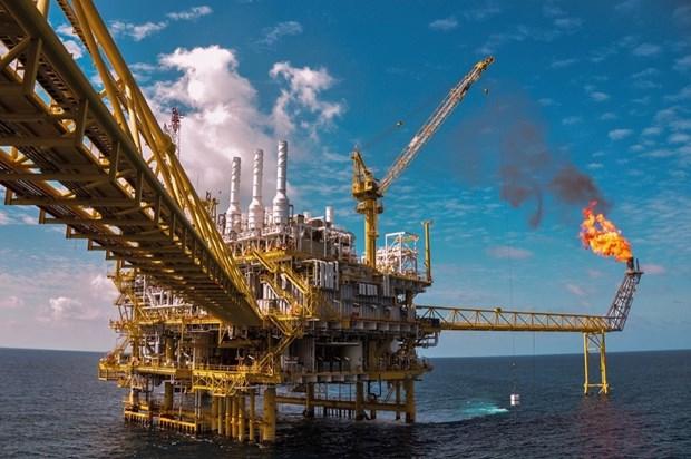 今年前10月越南国家油气集团石油开采量达1171万吨 超额完成计划 hinh anh 1