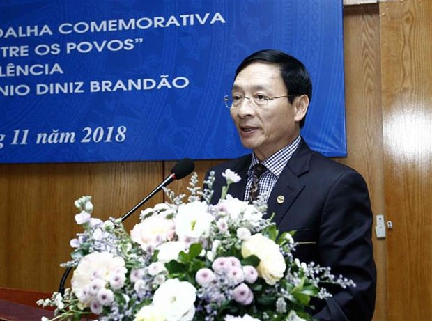 越南友好组织联合会向巴西驻越大使授予纪念章 hinh anh 2