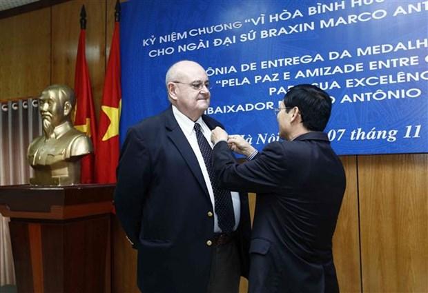 越南友好组织联合会向巴西驻越大使授予纪念章 hinh anh 1