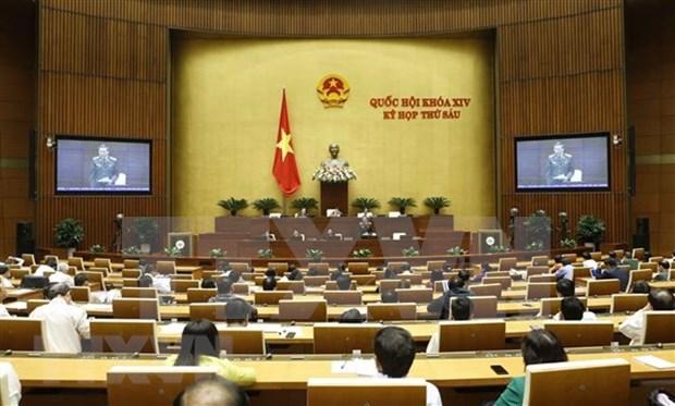 第十四届国会第六次会议:讨论《特赦法草案》和《畜牧法草案》 hinh anh 1