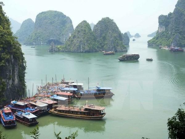 越南旅游业发展扶持金会即将亮相 hinh anh 1