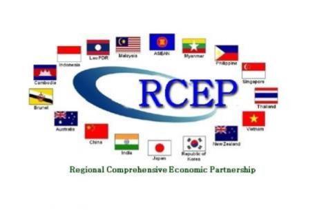 """东盟国家正努力将印度""""拉""""入《区域全面经济伙伴关系协定》 hinh anh 1"""