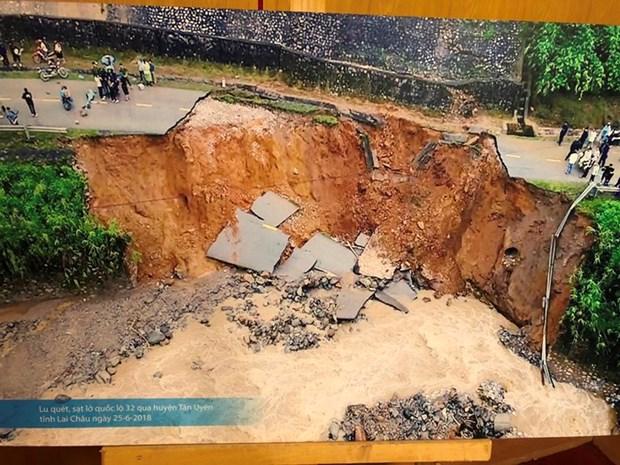 日本向越南分享减轻自然灾害影响的经验 hinh anh 1