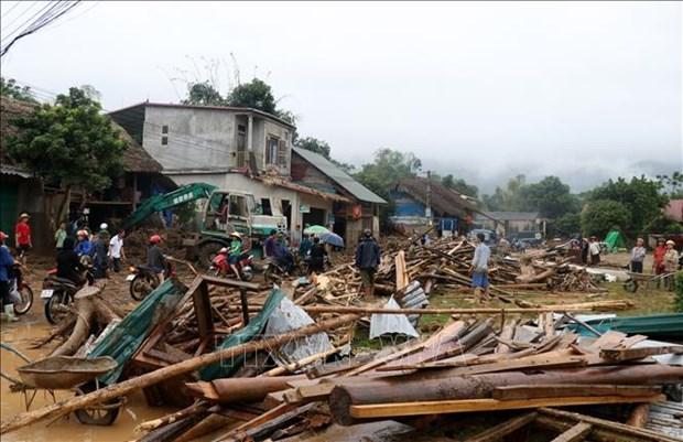 日本向越南分享减轻自然灾害影响的经验 hinh anh 2