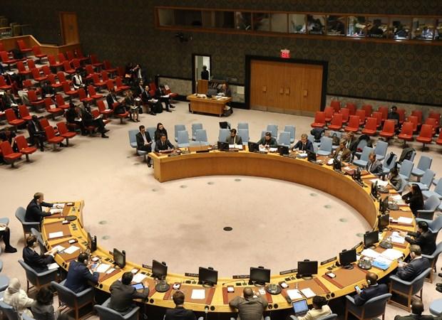 越南承诺加强多边主义和联合国作用 hinh anh 1