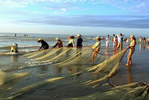 清化省同步发展海洋经济的5大支柱产业 hinh anh 1