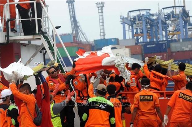 印尼客机坠海事件:搜救结束 一黑匣子仍未寻获 hinh anh 1