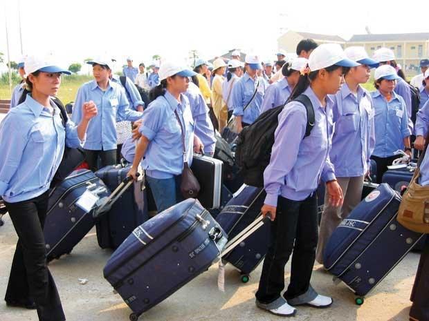 中国台湾成为越南最大劳务输出市场 hinh anh 1