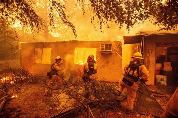 越南驻美国大使馆:美国加州森林大火事故中尚未有越南人伤亡报告 hinh anh 3