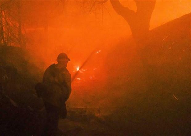 越南驻美国大使馆:美国加州森林大火事故中尚未有越南人伤亡报告 hinh anh 2