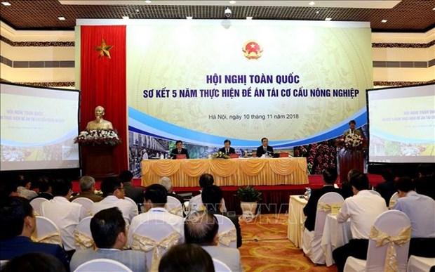 越南副总理郑廷勇:越南需要建立现代智能农业 hinh anh 1