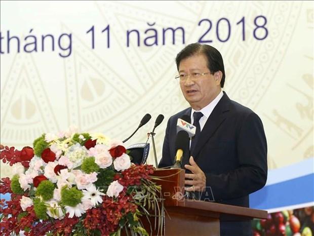 越南副总理郑廷勇:越南需要建立现代智能农业 hinh anh 2