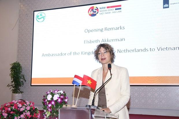 芹苴市与荷兰合作 促进农业可持续发展 hinh anh 1