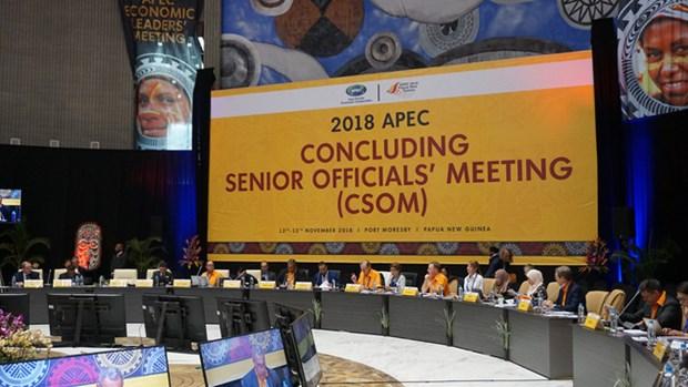 越南出席2018年APEC高官会总结会议 hinh anh 1