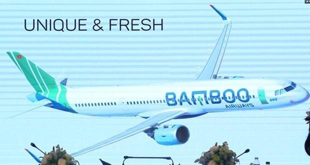 越竹航空公司将开通100条国内外航线 hinh anh 1