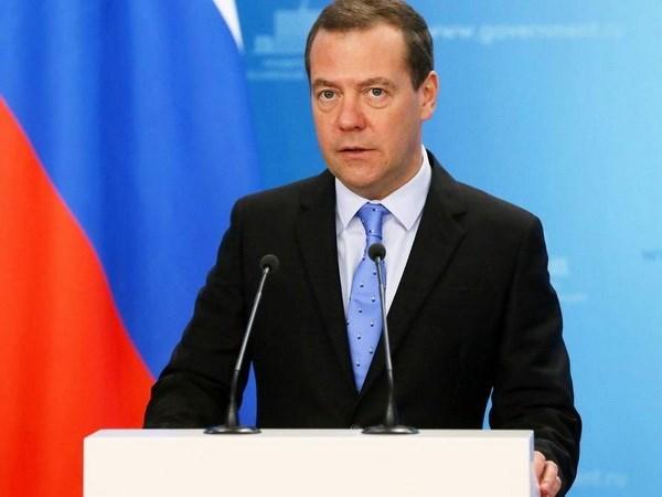 俄罗斯总理梅德韦杰夫即将访问越南 hinh anh 1