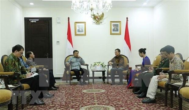 越南与印尼加强合作关系 hinh anh 1