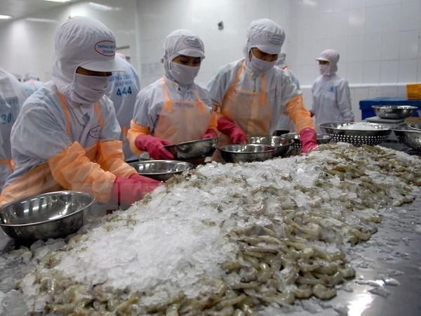 越南白脚虾对欧盟的出口保持上升态势 hinh anh 1