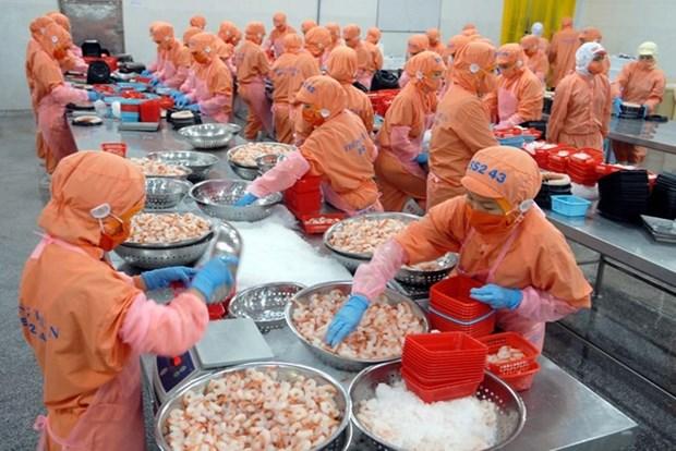 越南农林水产品远销世界200个国家和地区 hinh anh 2