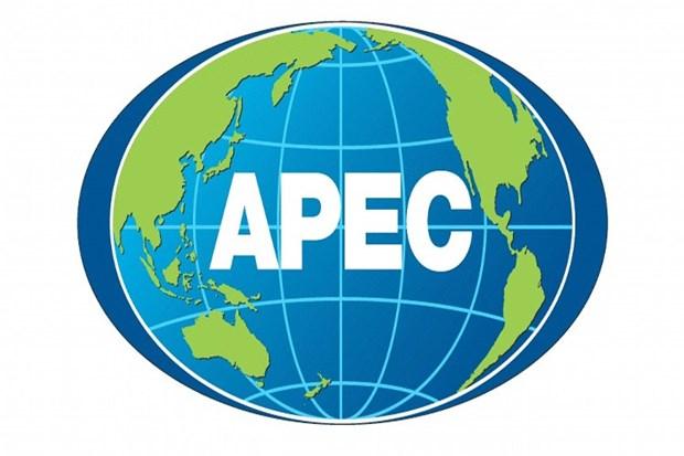 APEC部长会议探讨进一步开拓市场和加快区域经济一体化进程的措施 hinh anh 1