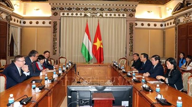 胡志明市与匈牙利加强经济合作 hinh anh 1
