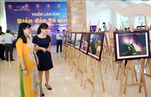 """""""祖国海洋岛屿""""图片展在岘港开展 hinh anh 3"""