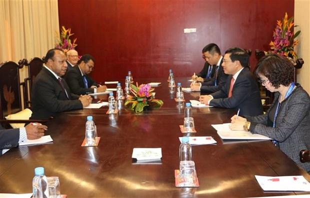 越南政府副总理兼外长范平明与巴布亚新几内亚外长举行会谈 hinh anh 2