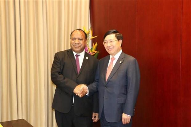 越南政府副总理兼外长范平明与巴布亚新几内亚外长举行会谈 hinh anh 1