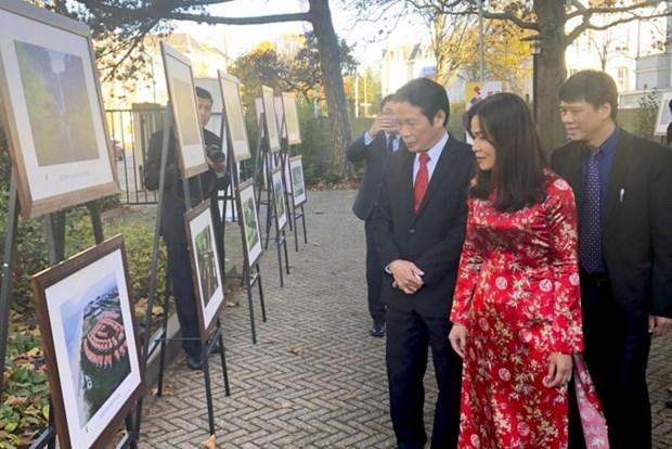 庆祝越荷建交45周年图片展在荷兰举行 hinh anh 2