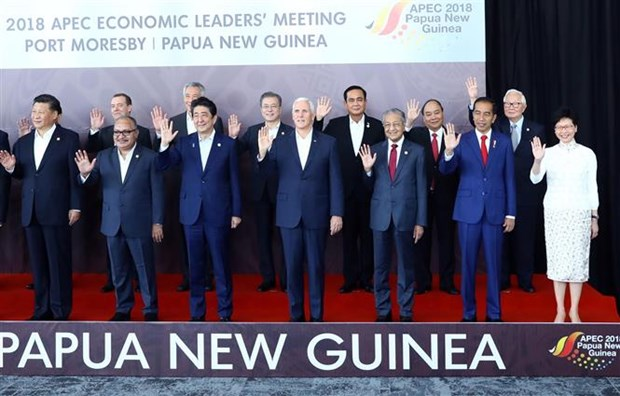 APEC领导人集中讨论自由贸易 hinh anh 1