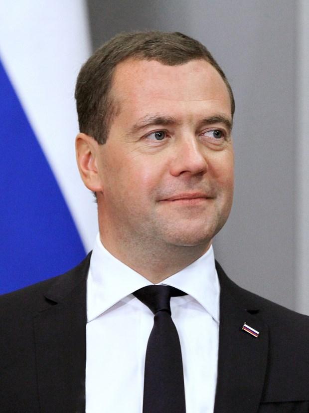 俄罗斯总理梅德韦杰夫开始对越南进行正式访问 hinh anh 1