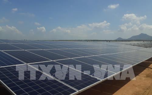 庆和省各太阳发电站将于2019年投入运行 hinh anh 1