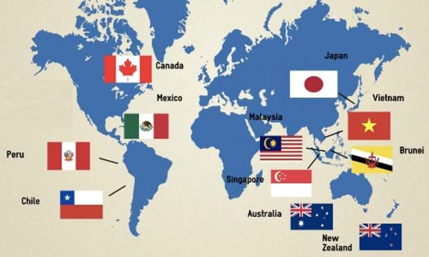越南批准《跨太平洋伙伴关系全面进展协定》:利益及优势 hinh anh 1