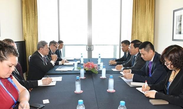 越南外交部副部长范平明会见新西兰副总理兼外长 hinh anh 1
