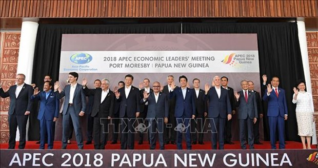 2018年APEC领导人会议结束 hinh anh 1