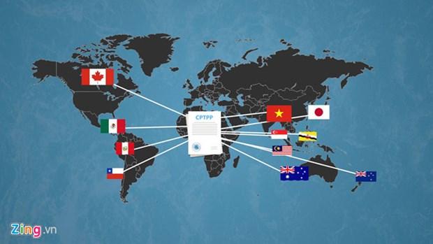 CPTPP成员国即将讨论协定运行方法 hinh anh 1