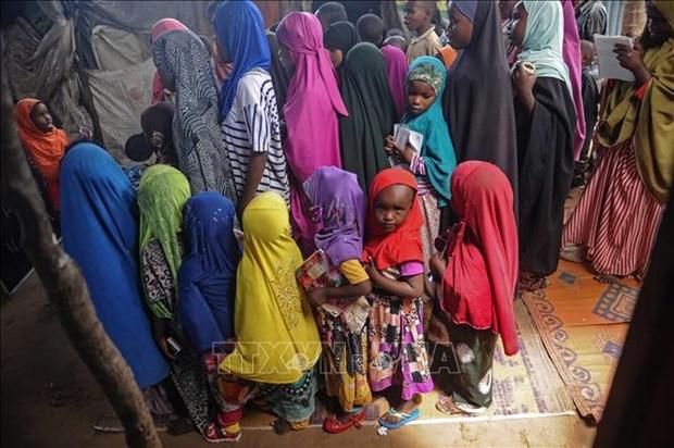 联合国呼吁结束针对妇女和女童的暴力行为 hinh anh 1