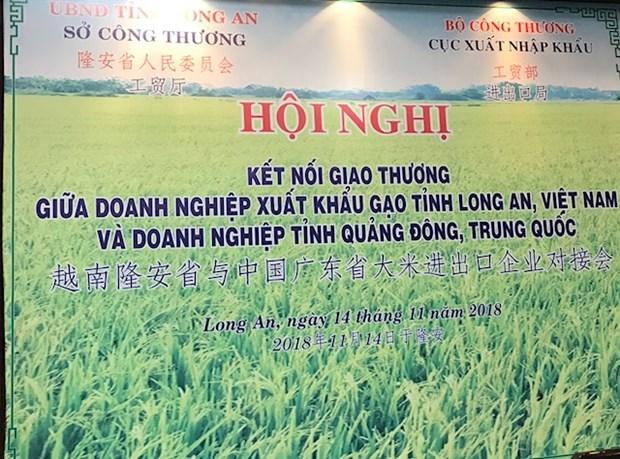 中国广东省大米进口商赴越开展大米交易活动 hinh anh 1