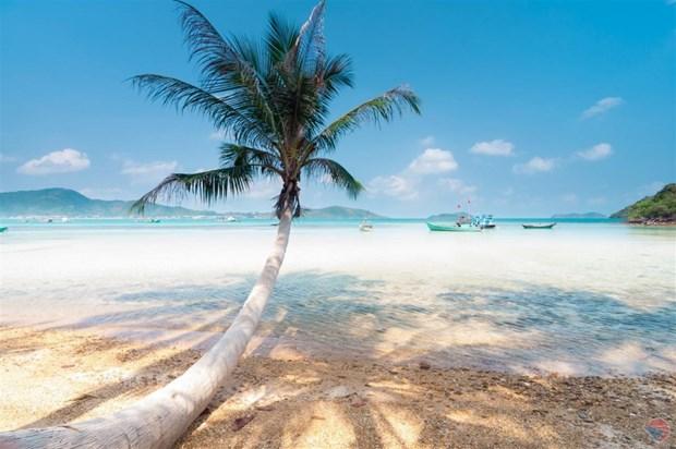 越南海洋岛屿:激发海盗群岛旅游潜力 hinh anh 1