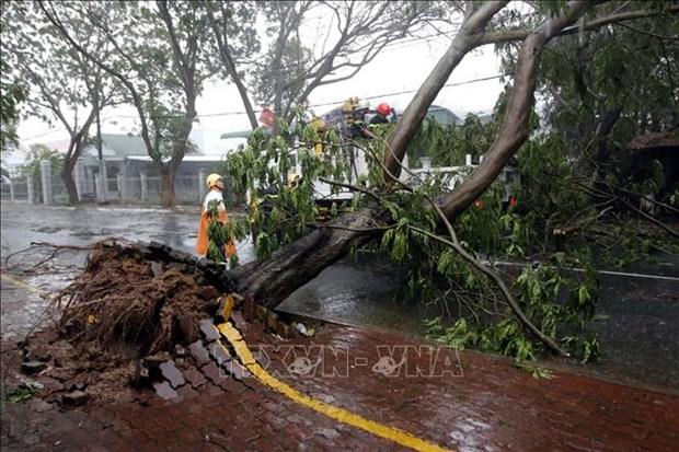 第九号台风给南部各省市造成损失巨大 hinh anh 1
