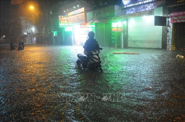 受第九号台风影响的胡志明市等省市多所学校停课 多架航班受影响 hinh anh 2