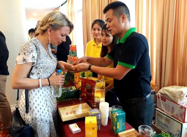 越南树立茶叶品牌 hinh anh 2
