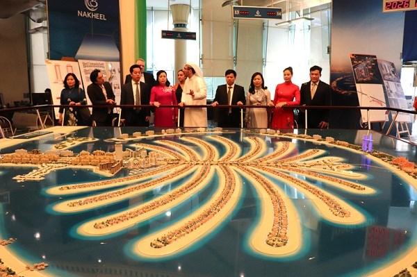河内市扩大与埃及 、希腊和阿联酋的合作关系 hinh anh 3